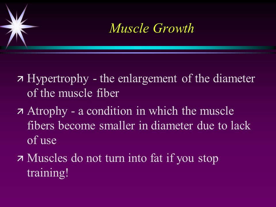 Muscle Growth ä ä Hypertrophy - the enlargement of the diameter of the muscle fiber ä ä Atrophy - a condition in which the muscle fibers become smaller in diameter due to lack of use ä ä Muscles do not turn into fat if you stop training!