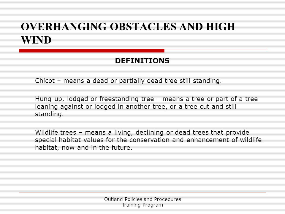 OVERHANGING OBSTACLES AND HIGH WIND DEFINITIONS Chicot – means a dead or partially dead tree still standing.