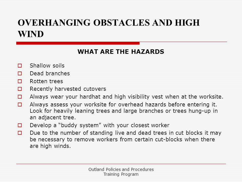 OVERHANGING OBSTACLES AND HIGH WIND WHAT ARE THE HAZARDS  Shallow soils  Dead branches  Rotten trees  Recently harvested cutovers  Always wear your hardhat and high visibility vest when at the worksite.