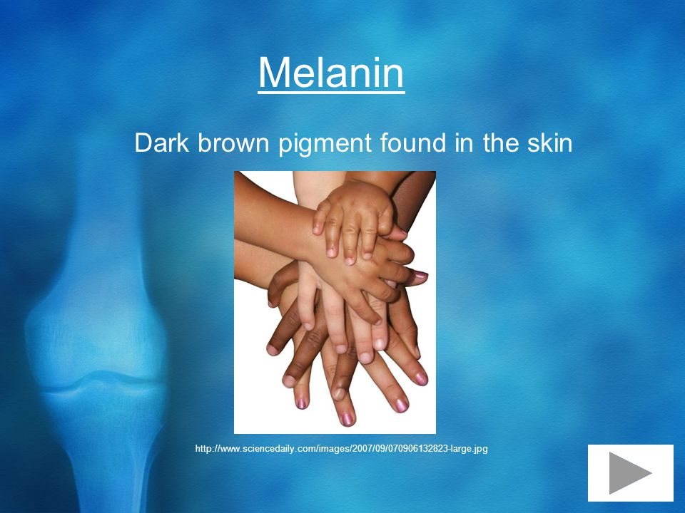 Melanin Dark brown pigment found in the skin http://www.sciencedaily.com/images/2007/09/070906132823-large.jpg