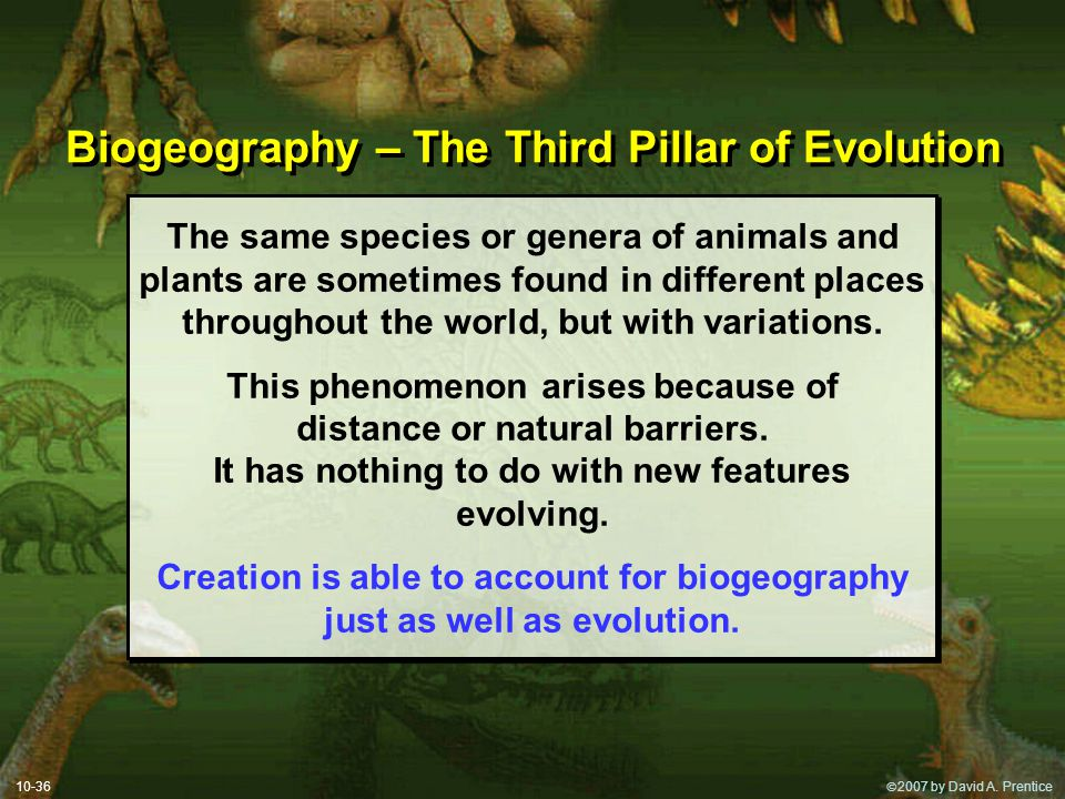  2007 by David A. Prentice Biogeography – The Third Pillar of Evolution The same species or genera of animals and plants are sometimes found in diff