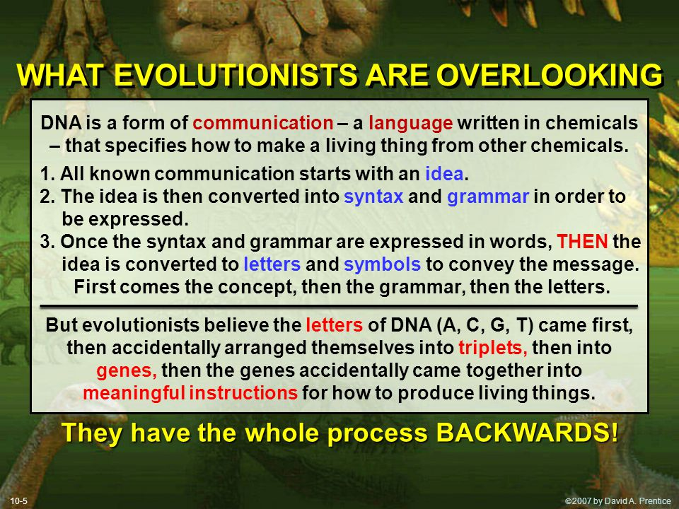  2007 by David A. Prentice WHAT EVOLUTIONISTS ARE OVERLOOKING DNA is a form of communication – a language written in chemicals – that specifies how