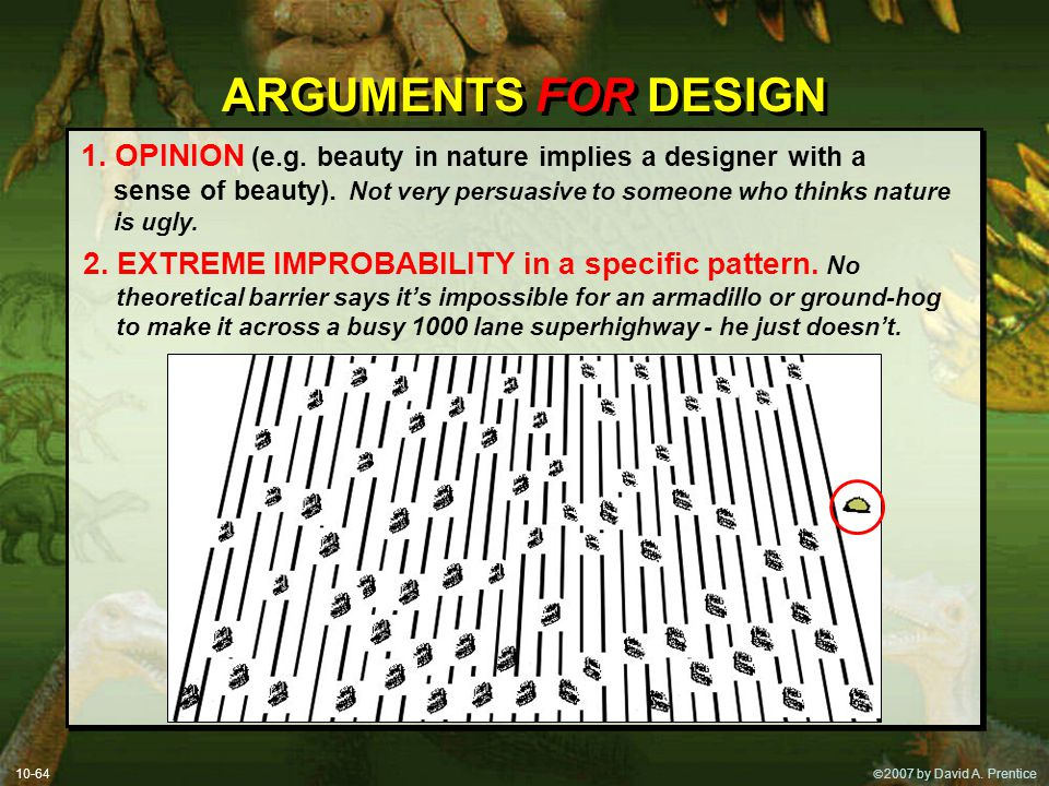  2007 by David A. Prentice ARGUMENTS FOR DESIGN 1. OPINION (e.g. beauty in nature implies a designer with a sense of beauty). Not very persuasive to