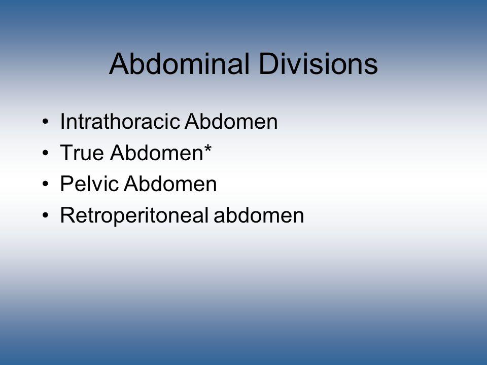 Abdominal Divisions Intrathoracic Abdomen True Abdomen* Pelvic Abdomen Retroperitoneal abdomen