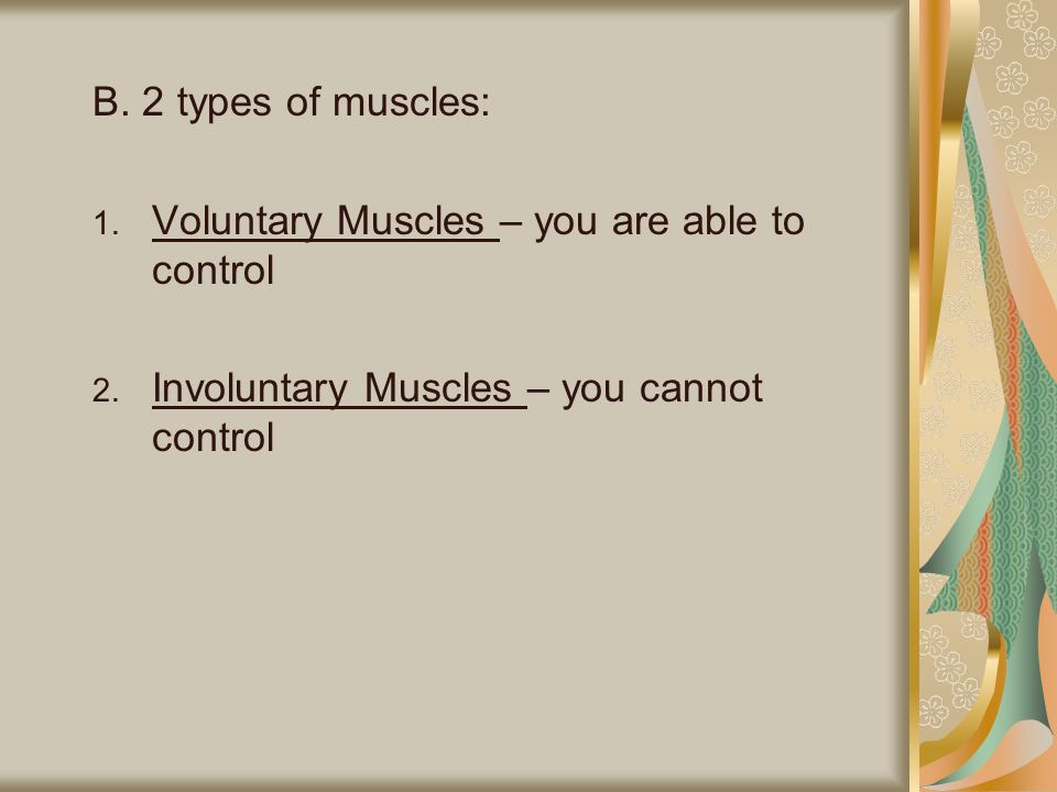 C.3 types of muscle tissue: 1.