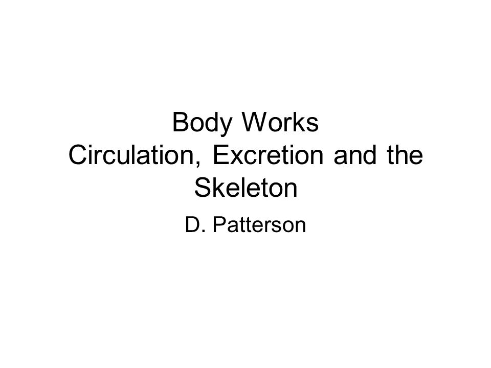 Body Works Circulation, Excretion and the Skeleton D. Patterson