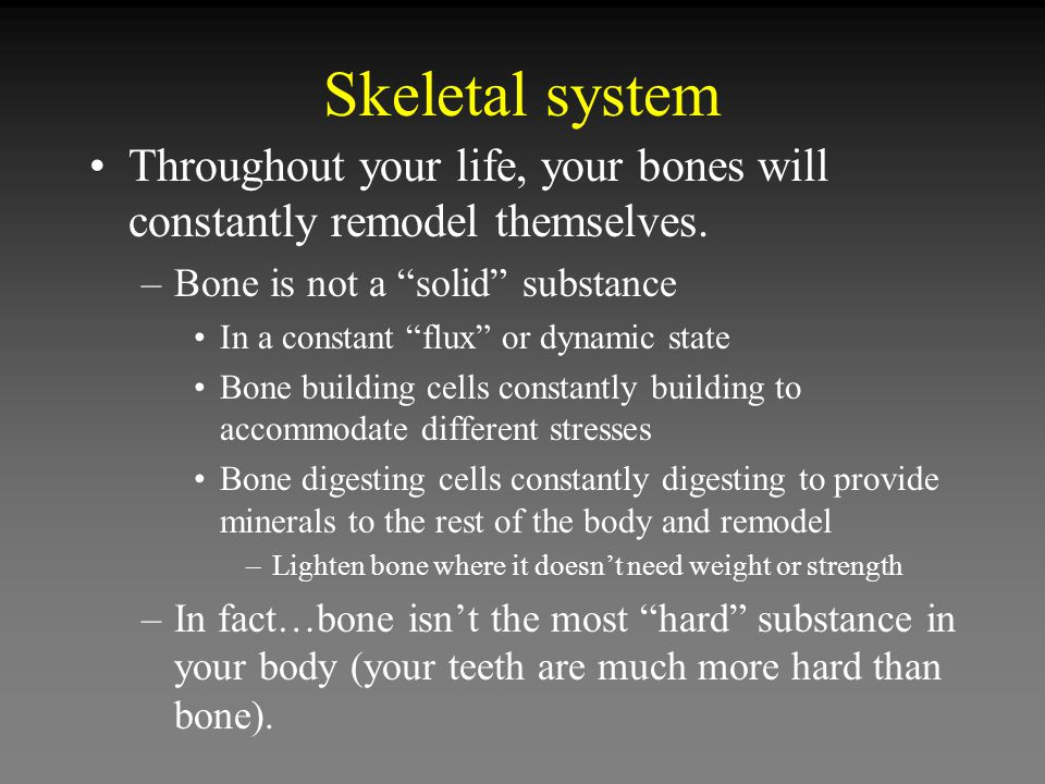 Skeletal system Throughout your life, your bones will constantly remodel themselves.