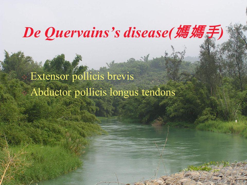 De Quervains's disease( 媽媽手 )  Extensor pollicis brevis  Abductor pollicis longus tendons