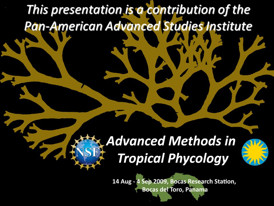 12 This presentation is a contribution of the Pan-American Advanced Studies Institute