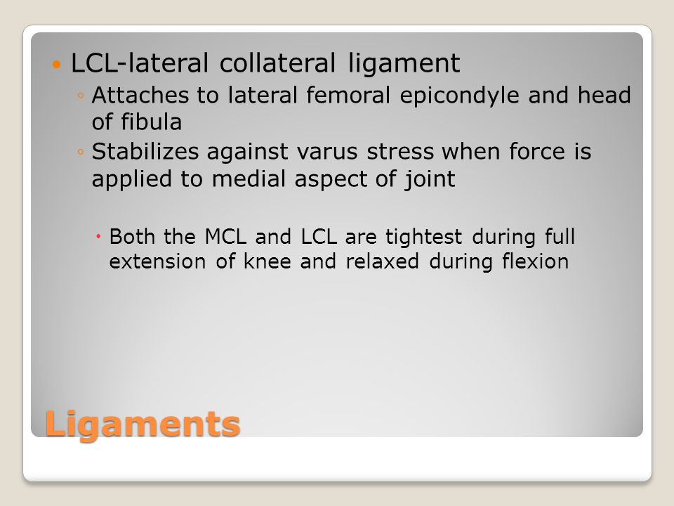 Ligaments LCL-lateral collateral ligament ◦Attaches to lateral femoral epicondyle and head of fibula ◦Stabilizes against varus stress when force is applied to medial aspect of joint  Both the MCL and LCL are tightest during full extension of knee and relaxed during flexion