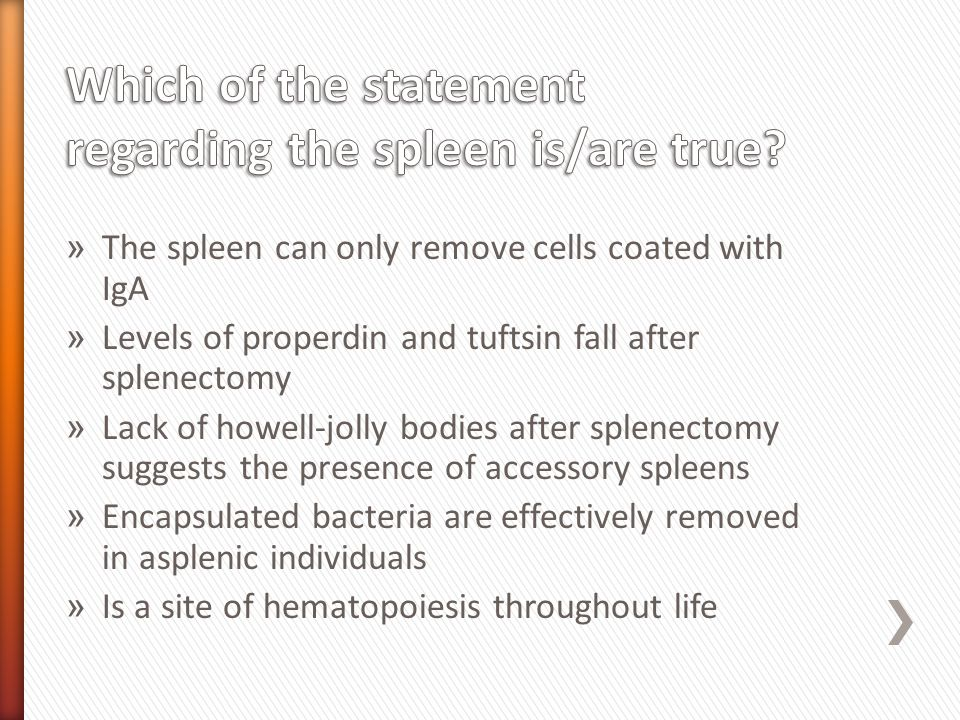 » The spleen can only remove cells coated with IgA » Levels of properdin and tuftsin fall after splenectomy » Lack of howell-jolly bodies after splenectomy suggests the presence of accessory spleens » Encapsulated bacteria are effectively removed in asplenic individuals » Is a site of hematopoiesis throughout life