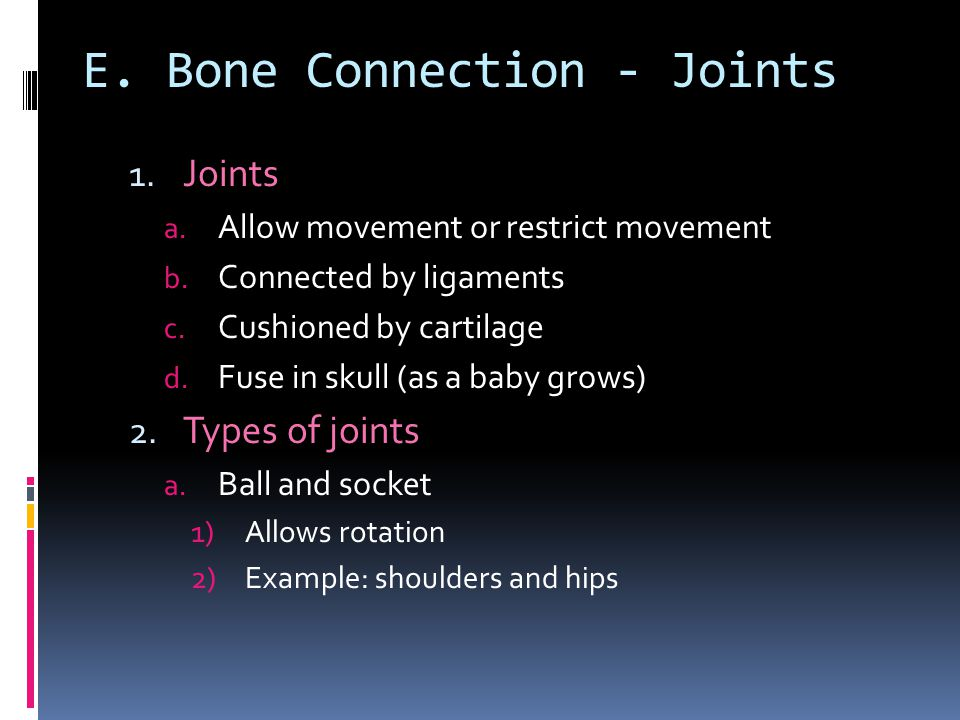 E. Bone Connection - Joints 1. Joints a. Allow movement orrestrict movement b. Connected by ligaments c. Cushioned by cartilage d. Fuse in skull (as a