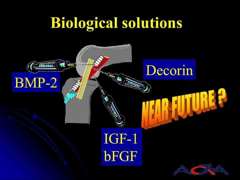 IGF-1 bFGF Decorin BMP-2 Biological solutions