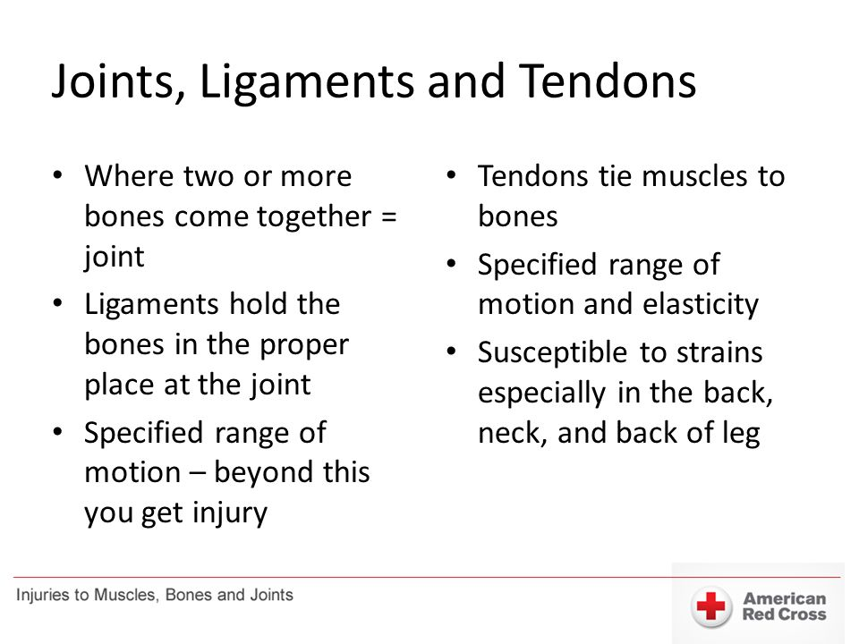 Joints, Ligaments and Tendons Where two or more bones come together = joint Ligaments hold the bones in the proper place at the joint Specified range