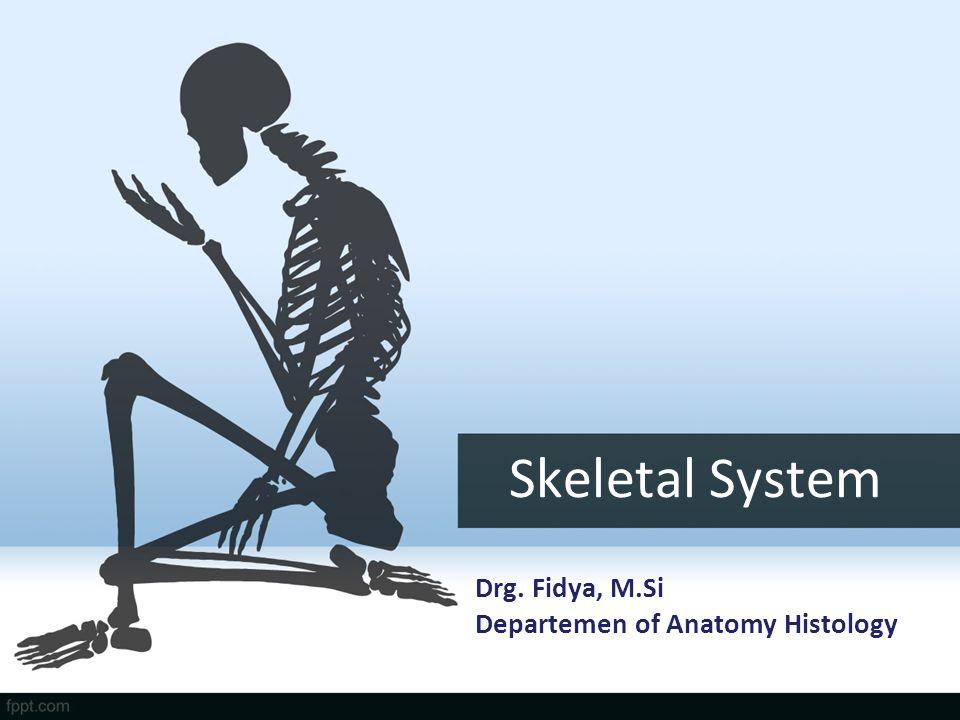 Skeletal System Drg. Fidya, M.Si Departemen of Anatomy Histology