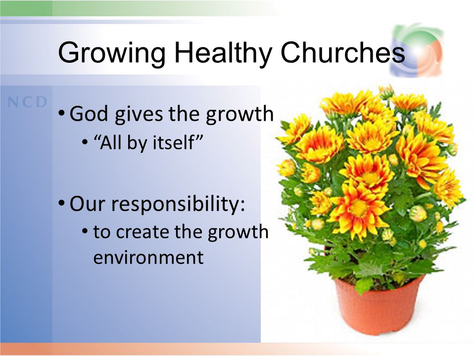 """Growing Healthy Churches God gives the growth """"All by itself"""" Our responsibility: to create the growth environment"""