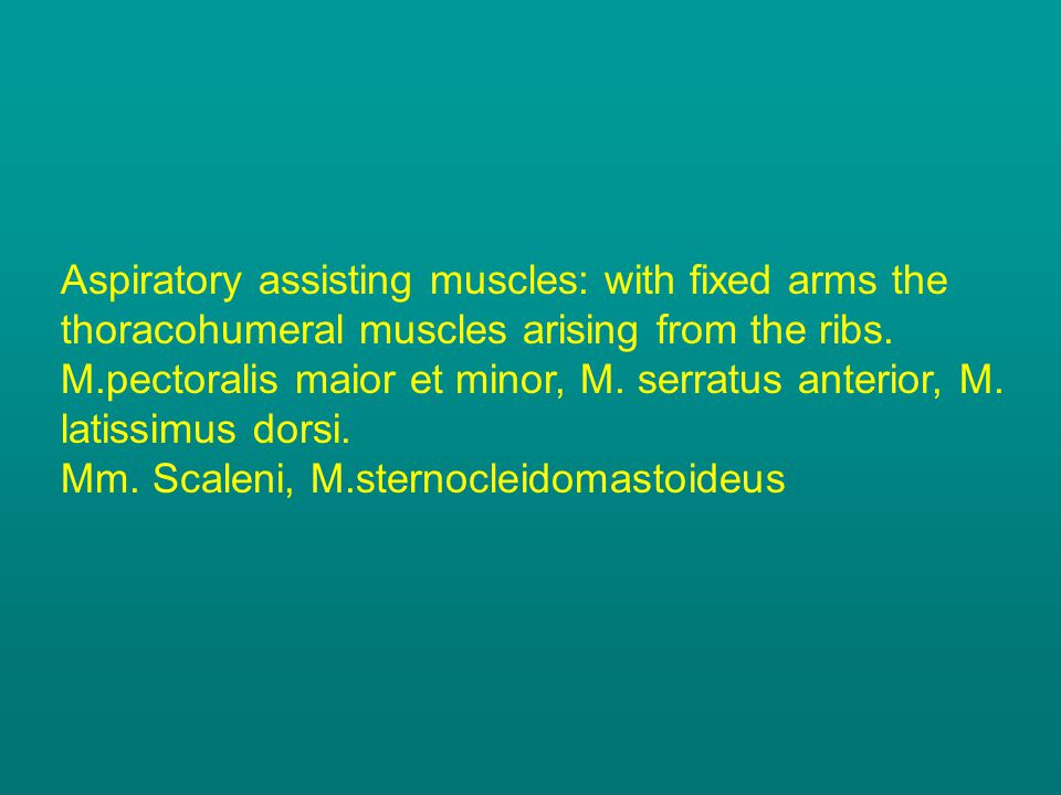 Aspiratory assisting muscles: with fixed arms the thoracohumeral muscles arising from the ribs. M.pectoralis maior et minor, M. serratus anterior, M.