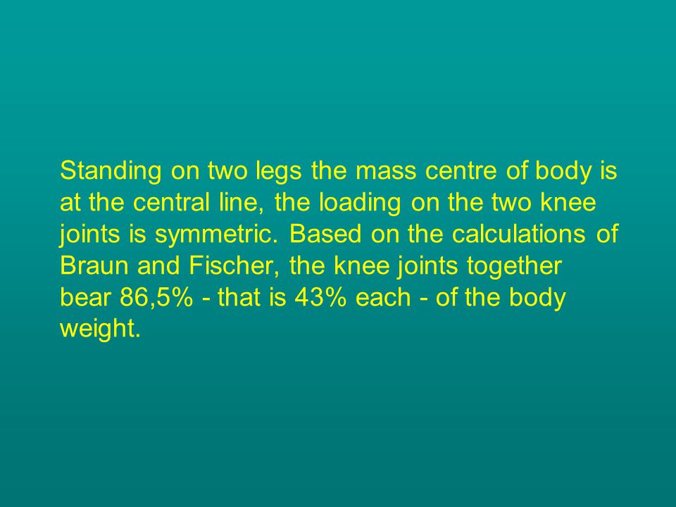 Standing on two legs the mass centre of body is at the central line, the loading on the two knee joints is symmetric. Based on the calculations of Bra