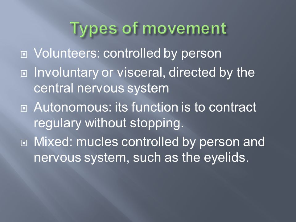  Volunteers: controlled by person  Involuntary or visceral, directed by the central nervous system  Autonomous: its function is to contract regulary without stopping.
