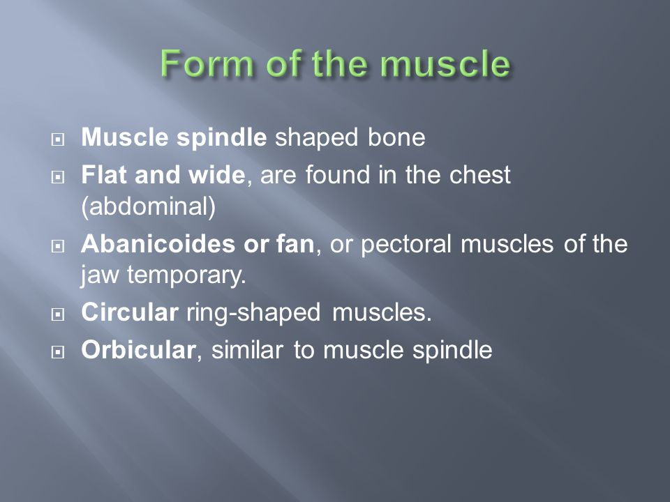  They are: 1.Diaphragm 2. Gluteus major and minor 3, deltoid 4.