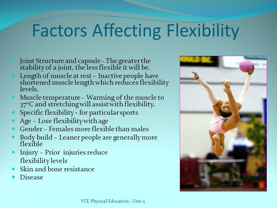 Factors Affecting Flexibility Joint Structure and capsule– The greater the stability of a joint, the less flexible it will be.