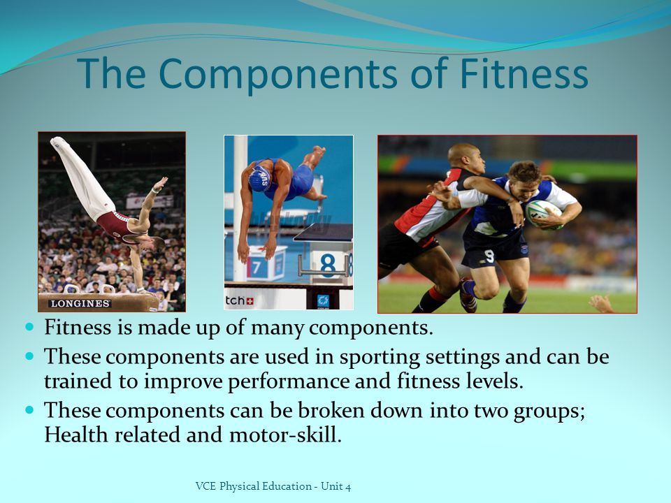 The Components of Fitness Fitness is made up of many components.