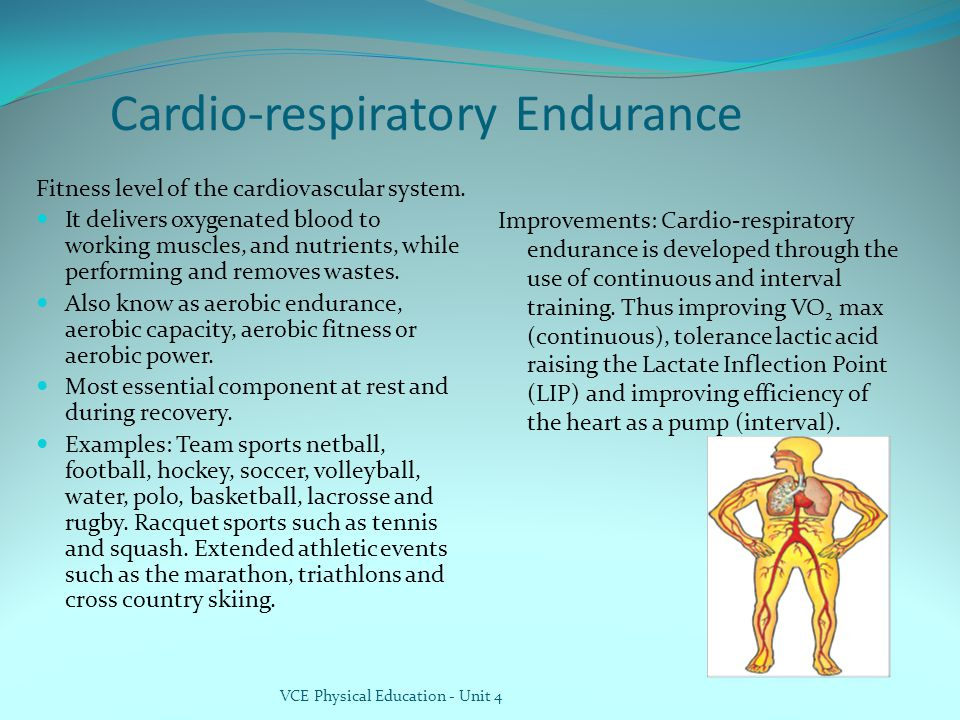 Cardio-respiratory Endurance Fitness level of the cardiovascular system.