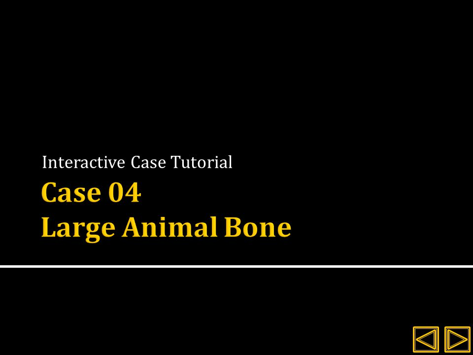 Review the history and signalment for the client  Evaluate the radiographs provided  Explore the interactive images and compare the answers given with your own interpretations.