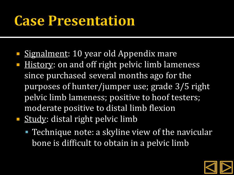 R HIND Small osteophyte Normal navicular Faint lucent line on distal phalanx