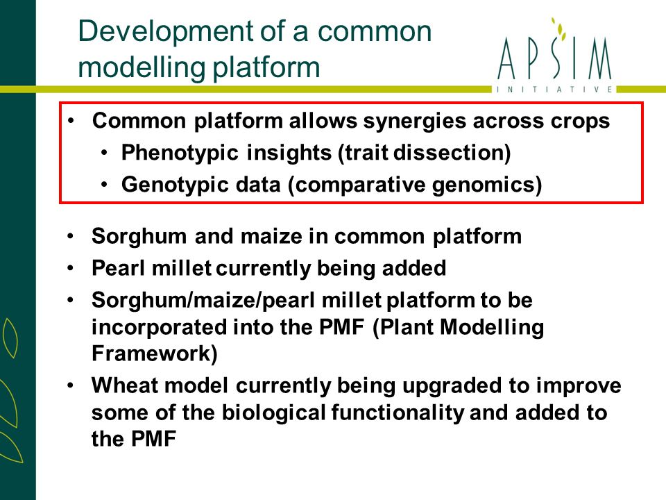 Sorghum and maize in common platform Pearl millet currently being added Sorghum/maize/pearl millet platform to be incorporated into the PMF (Plant Modelling Framework) Wheat model currently being upgraded to improve some of the biological functionality and added to the PMF Development of a common modelling platform Common platform allows synergies across crops Phenotypic insights (trait dissection) Genotypic data (comparative genomics)