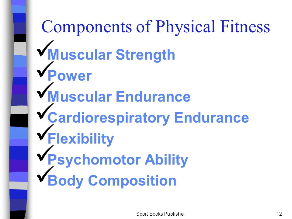 Sport Books Publisher12 Components of Physical Fitness Muscular Strength Power Muscular Endurance Cardiorespiratory Endurance Flexibility Psychomotor