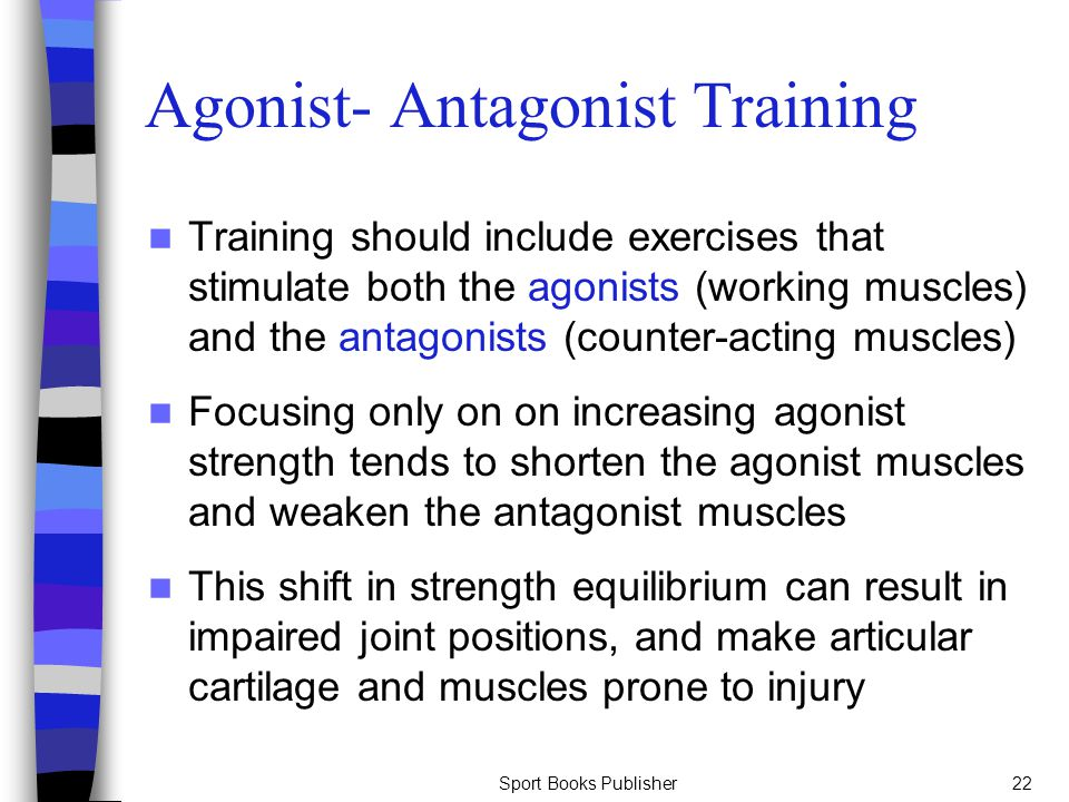 Sport Books Publisher22 Agonist- Antagonist Training Training should include exercises that stimulate both the agonists (working muscles) and the anta