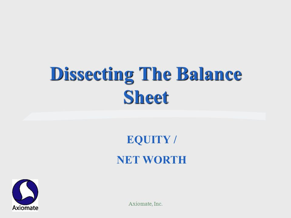 Axiomate, Inc. Dissecting The Balance Sheet EQUITY / NET WORTH
