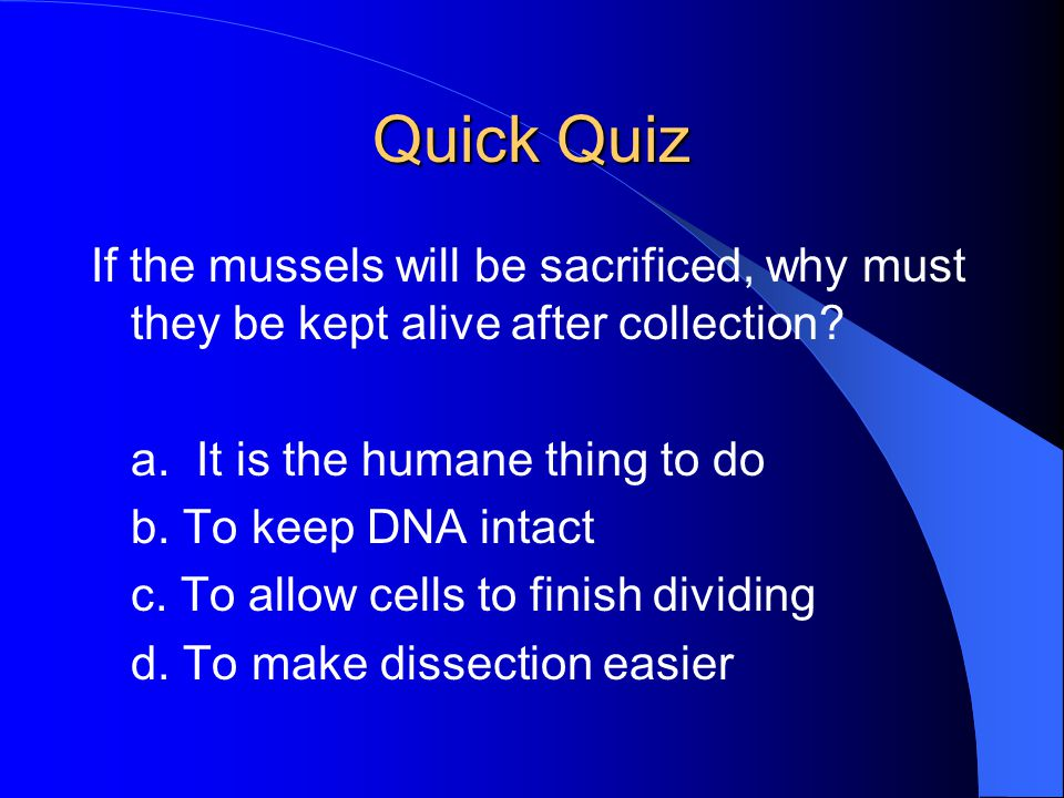 Quick Quiz If the mussels will be sacrificed, why must they be kept alive after collection? a. It is the humane thing to do b. To keep DNA intact c. T
