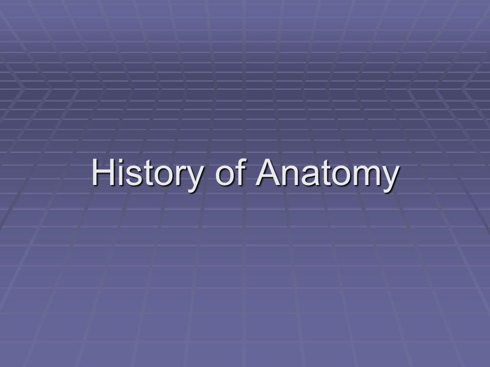 Andreas Vesalius (1514 to 1564) Barber surgeon (combination barber, dentist, doctor).