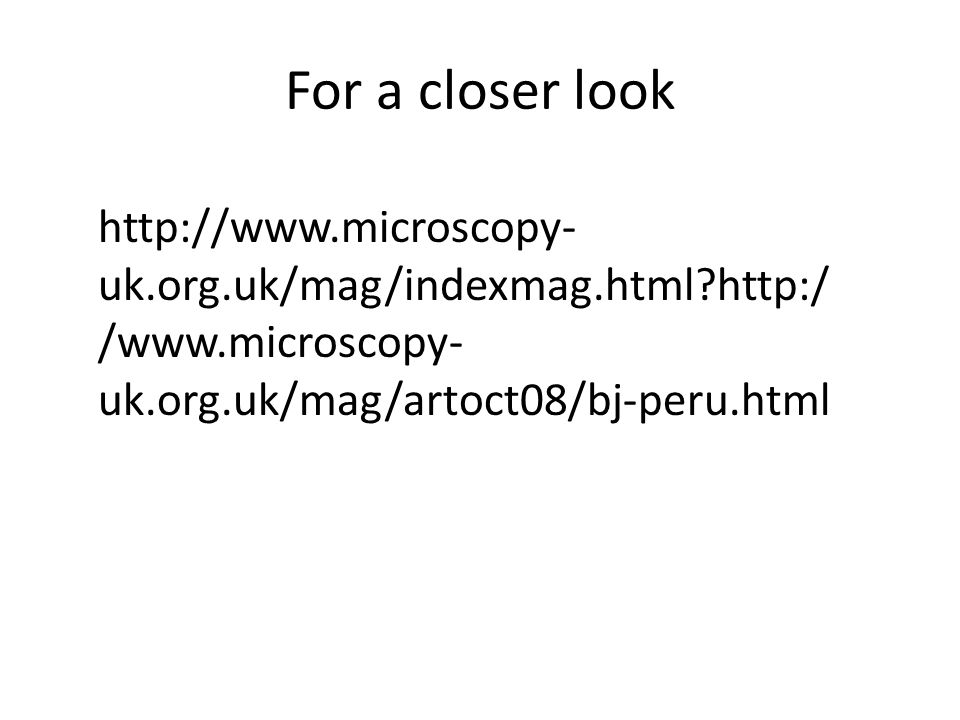 For a closer look http://www.microscopy- uk.org.uk/mag/indexmag.html?http:/ /www.microscopy- uk.org.uk/mag/artoct08/bj-peru.html