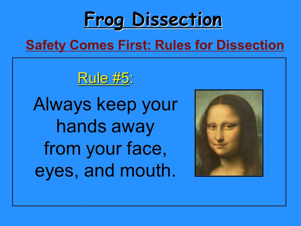 Frog Dissection Safety Comes First: Rules for Dissection Rule #5: Always keep your hands away from your face, eyes, and mouth.