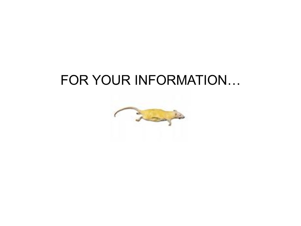 FOR YOUR INFORMATION…