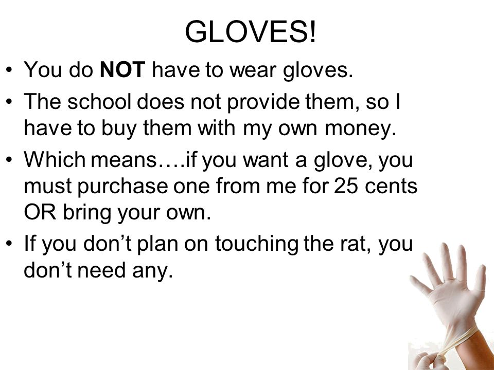 GLOVES! You do NOT have to wear gloves. The school does not provide them, so I have to buy them with my own money. Which means….if you want a glove, y