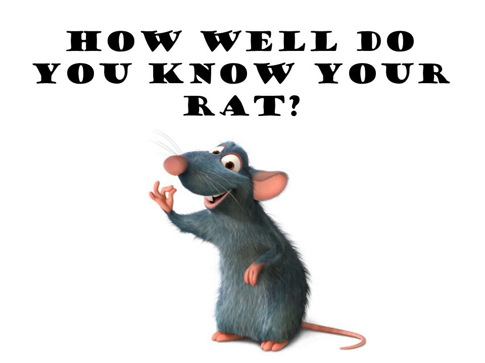 How well do you know your RAT?