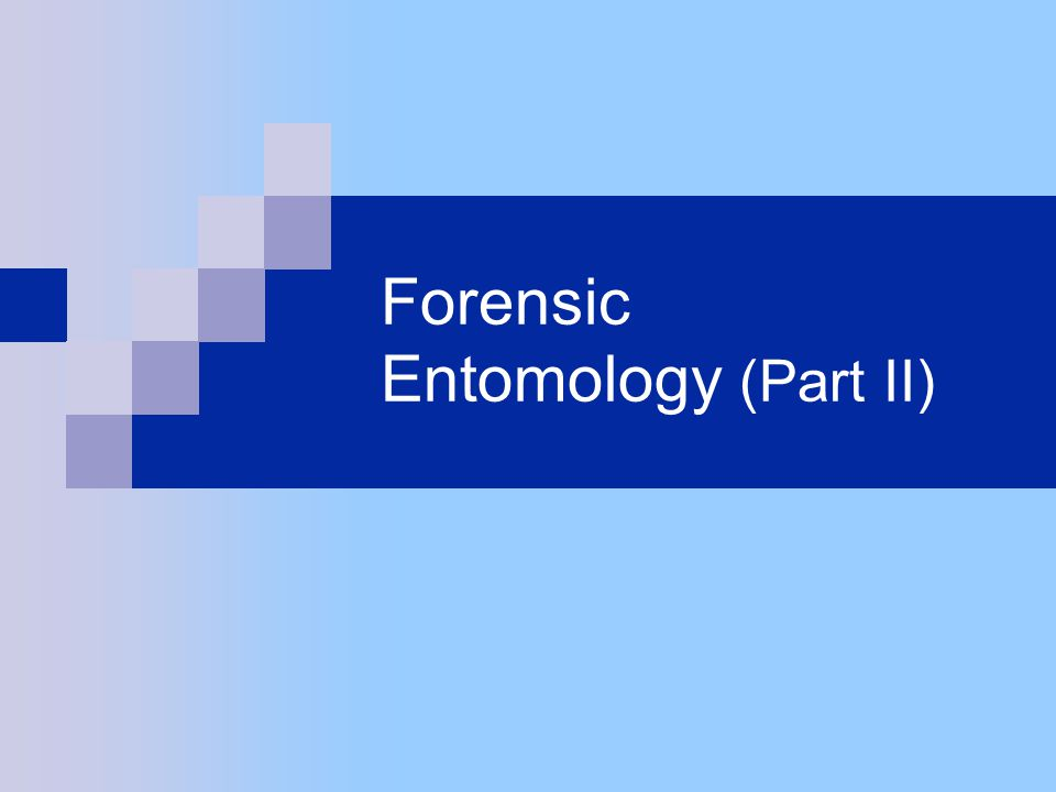 Forensic Entomology (Part II)