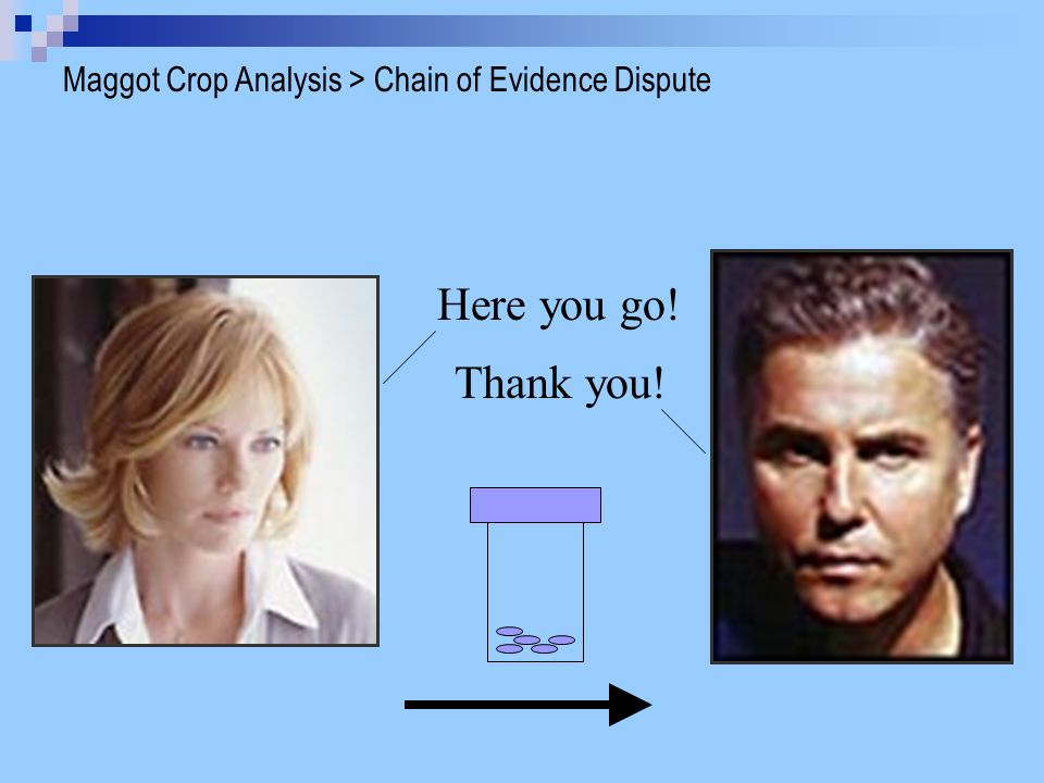 Here you go! Thank you! Maggot Crop Analysis > Chain of Evidence Dispute