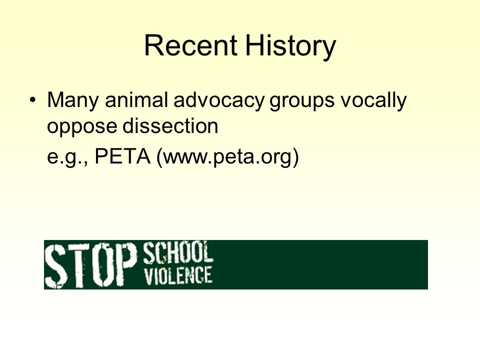 Recent History Many animal advocacy groups vocally oppose dissection e.g., PETA (www.peta.org)