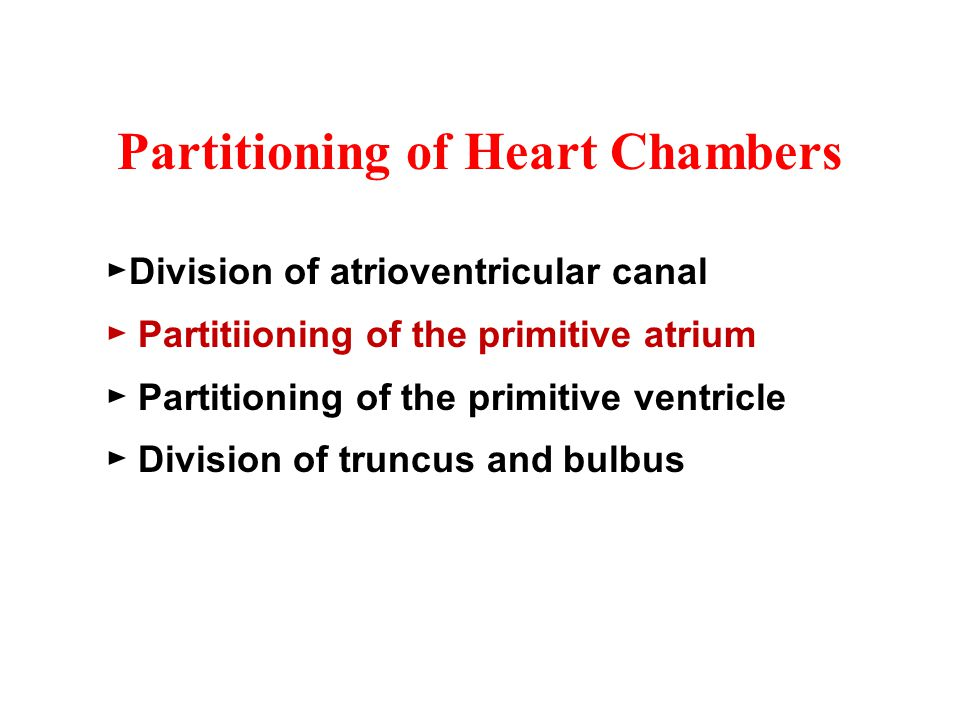 Partitioning of Heart Chambers ►Division of atrioventricular canal ► Partitiioning of the primitive atrium ► Partitioning of the primitive ventricle ► Division of truncus and bulbus