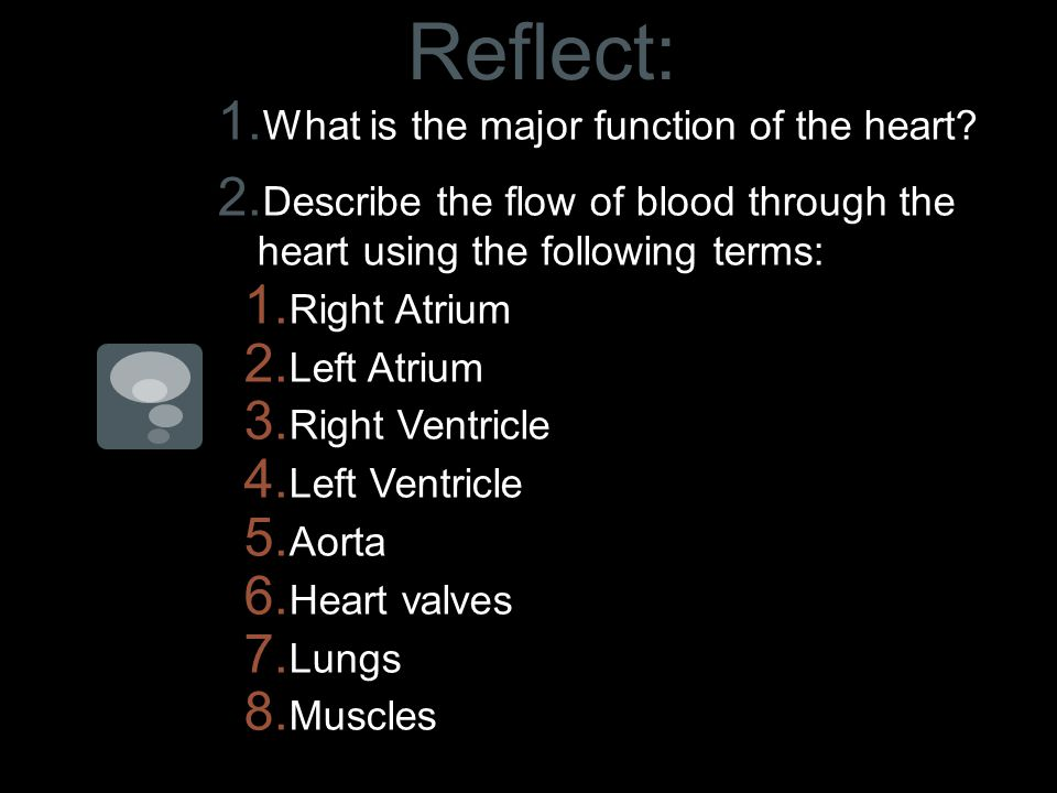 Reflect: 1. What is the major function of the heart.