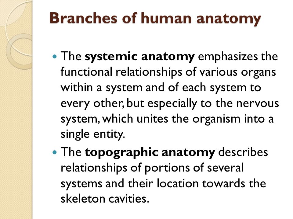Branches of human anatomy The systemic anatomy emphasizes the functional relationships of various organs within a system and of each system to every o