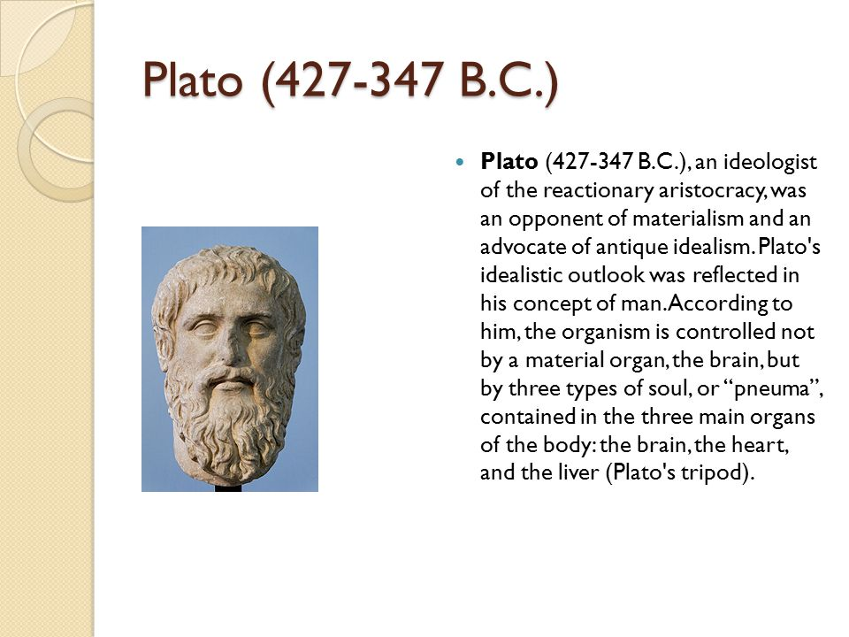 Aristotle (384-332 B.C.) Aristotle (384-332 B.C.) made careful investigations of all kids of animals, including humans, and pursued a limited type of scientific method in obtaining data.