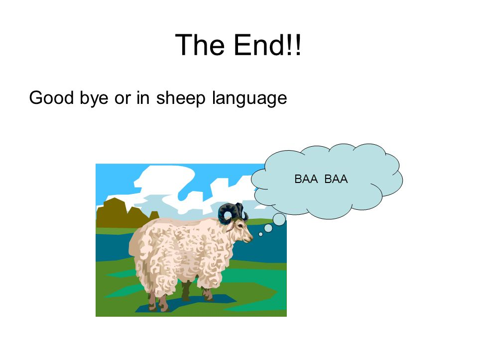 The End!! Good bye or in sheep language BAA