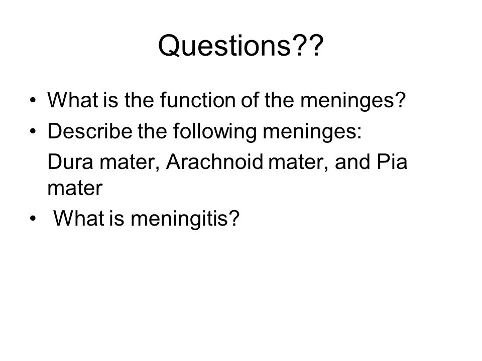 Questions?? What is the function of the meninges? Describe the following meninges: Dura mater, Arachnoid mater, and Pia mater What is meningitis?