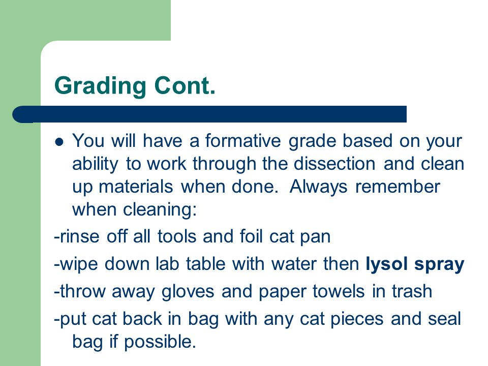 Grading Cont. You will have a formative grade based on your ability to work through the dissection and clean up materials when done. Always remember w